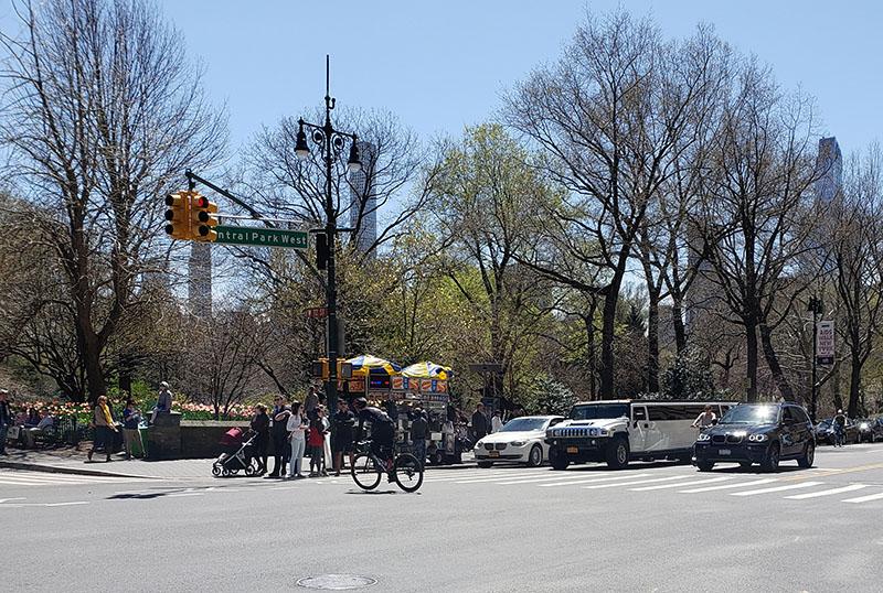 04-22-2018, Sunday, April 22, 2018, Russian Wedding Officiant Mikhail, Central Park New York City